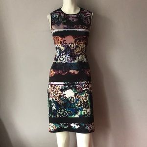 New Clover Canyon Floral Print Dress